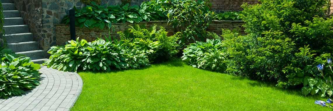 aangelegde tuin